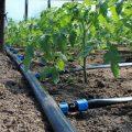 Трубы и шланги для огорода – выбор и применение