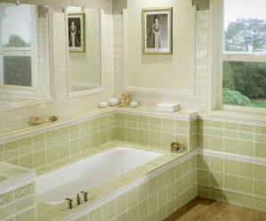Как бороться с плесенью в ванной, как уничтожить грибок